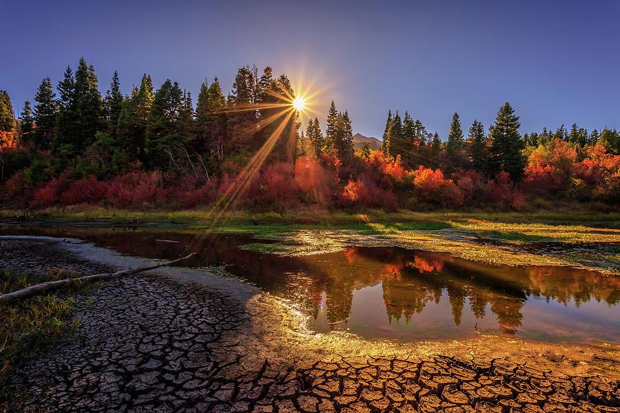 Landscape Photograph - Autumn Sun by Gina Herbert