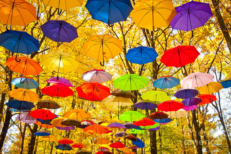 No Photograph - Autumn Umbrellas In The Sky by Oleksii Pyltsyn