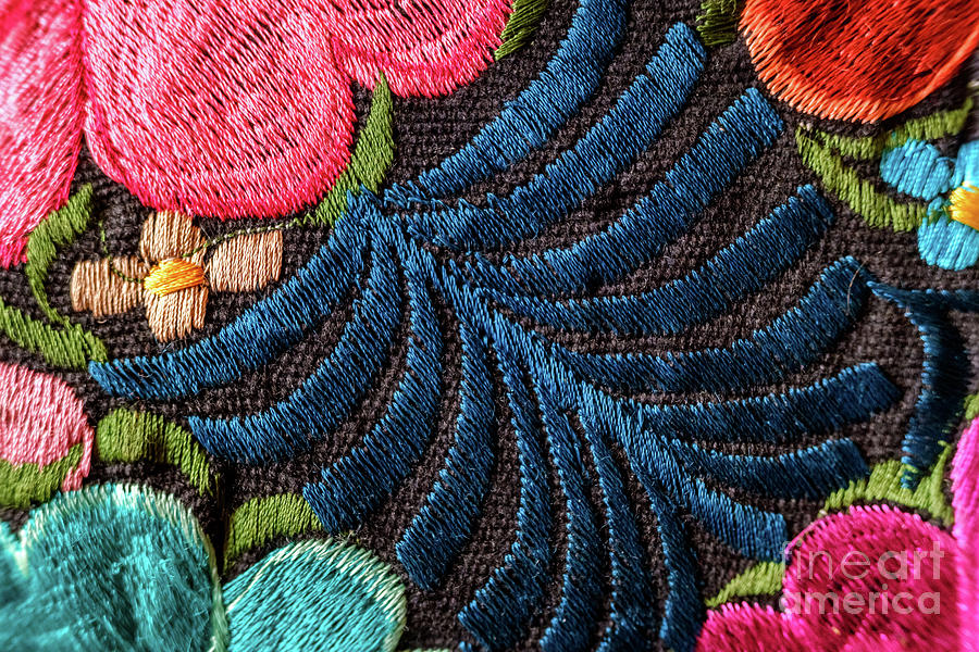 Background of hand-embroidered flowers on a fabric with colored threads. by Joaquin Corbalan