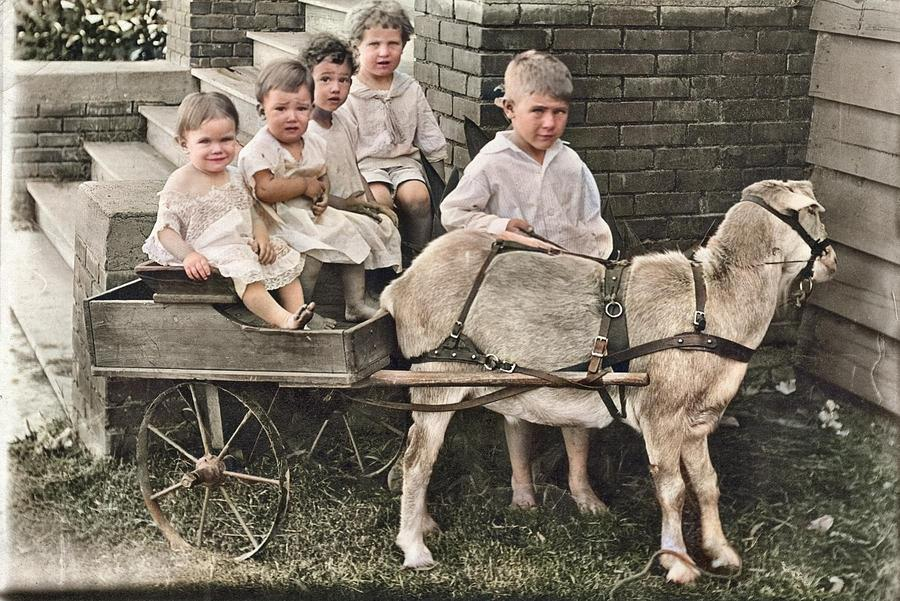 Barefoot kids and a goat colorized by Ahmet Asar by Ahmet Asar