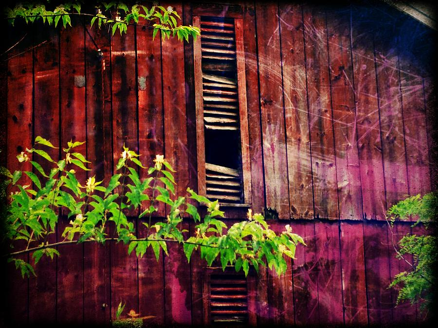 Barn in Shade by Michael L Kimble
