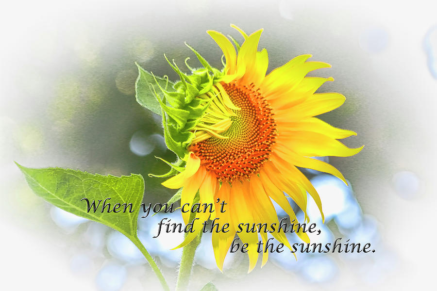 Be The Sunshine Photograph
