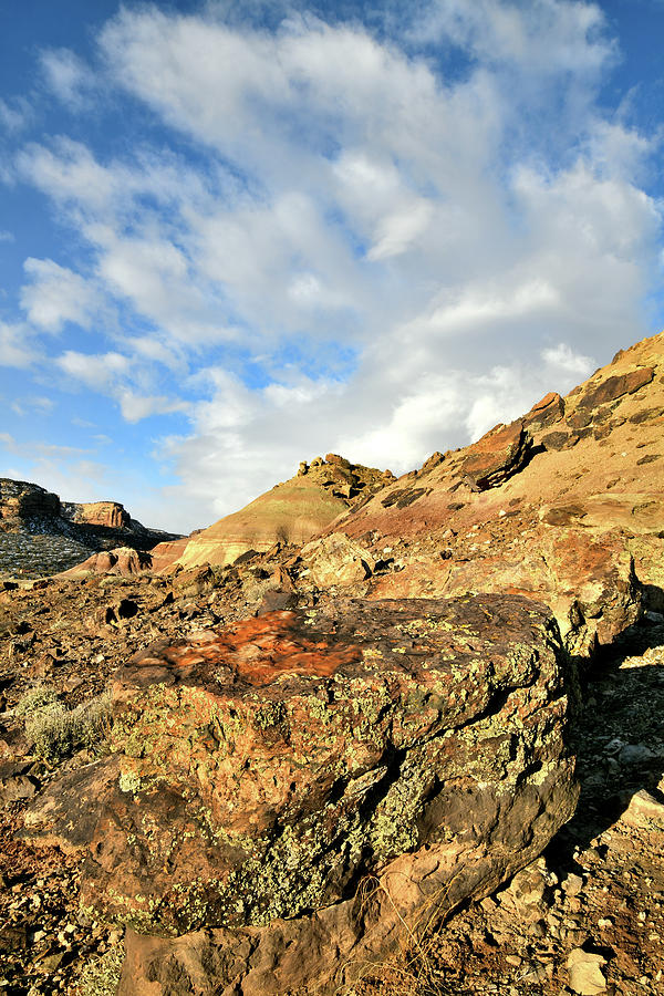 Beautiful Colors Of Ruby Mountain Photograph