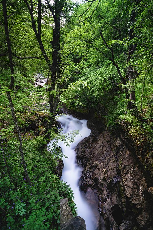 Balkan Photograph - Bela River, Balkan Mountain by Milan Ljubisavljevic