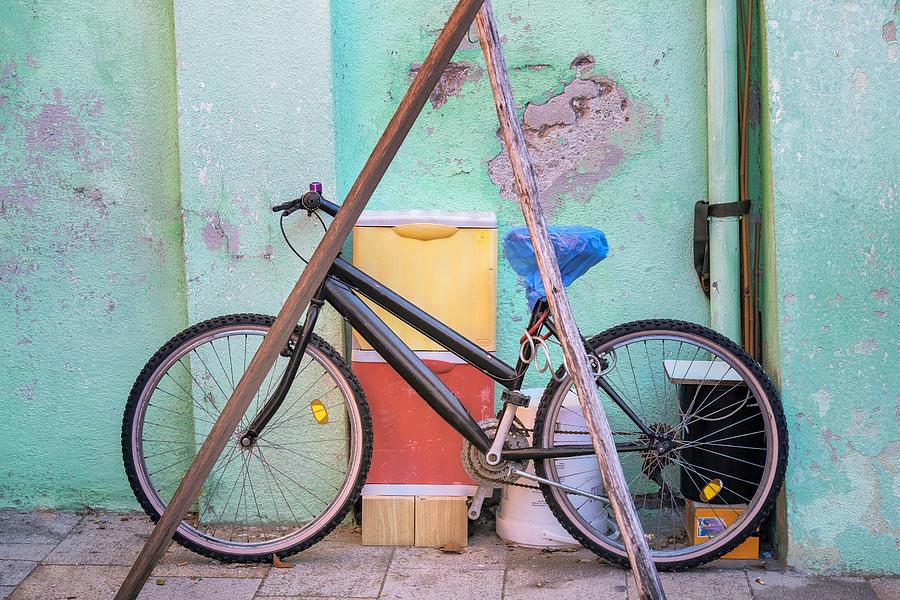 Bicycle by Susan Leonard