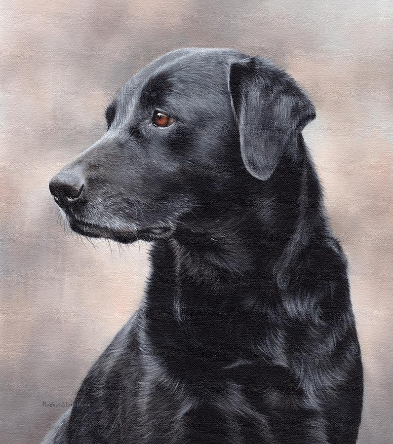 Black Labrador Painting by Rachel Stribbling