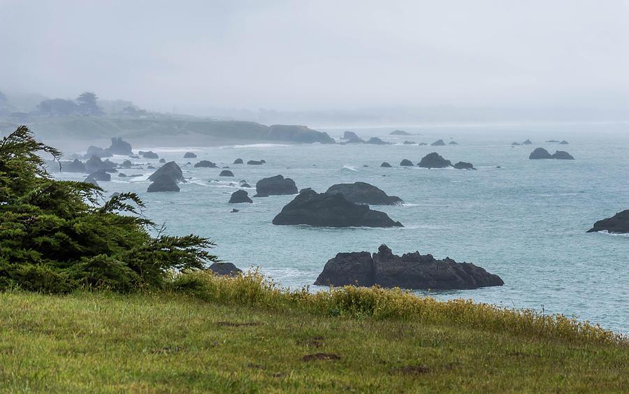 Bodega Bay by Mary Chris Hines