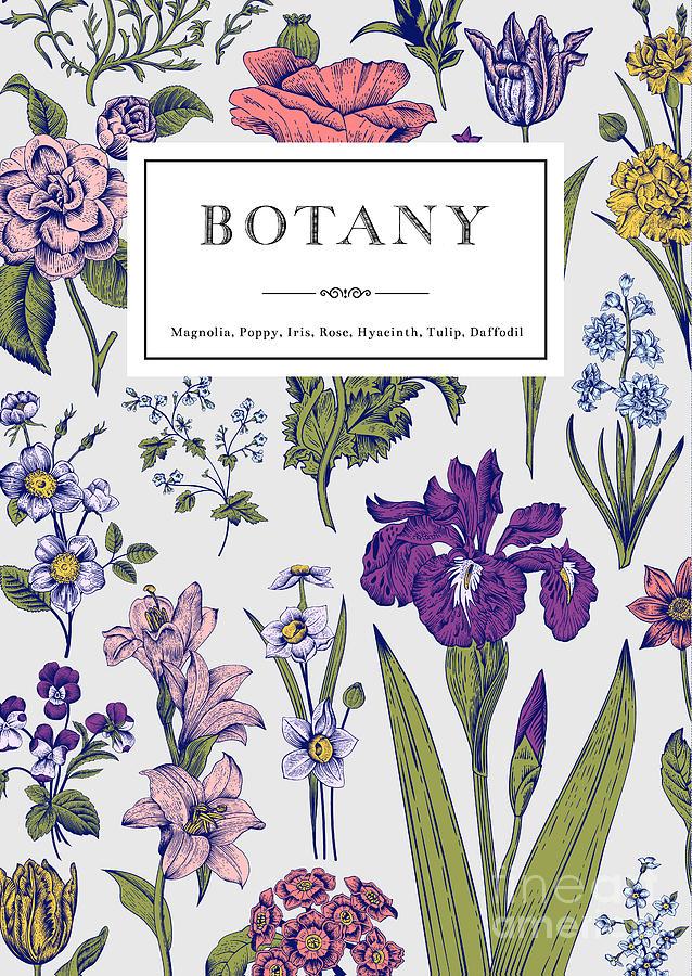 Love Digital Art - Botany. Vintage Floral Card. Vector by Olga Korneeva