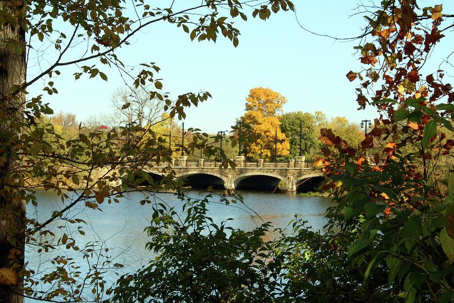 Bridge In Autumn Photograph