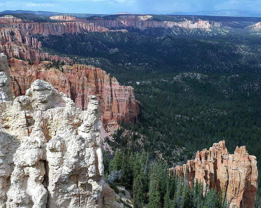 Bryce Canyon Vista by Arvin Miner