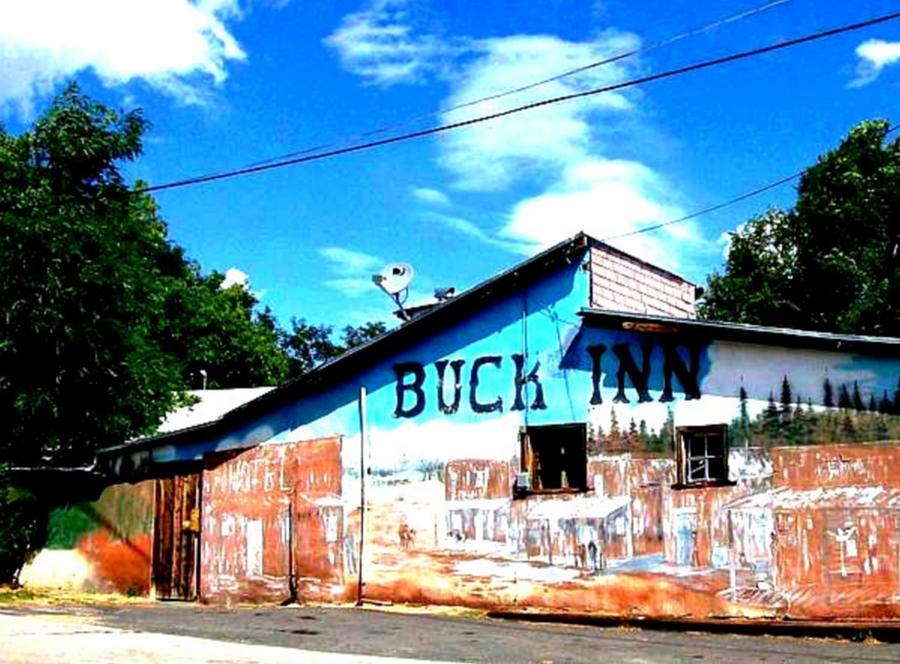 BUCK INN by Cj Carroll