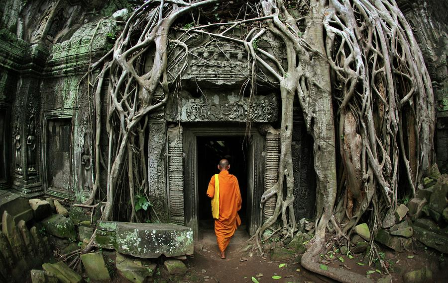 Buddhist Monk At Angkor Wat Temple Photograph by Timothy Allen