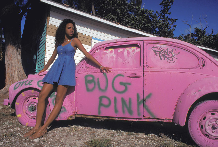 Pink Bug In Miami Photograph