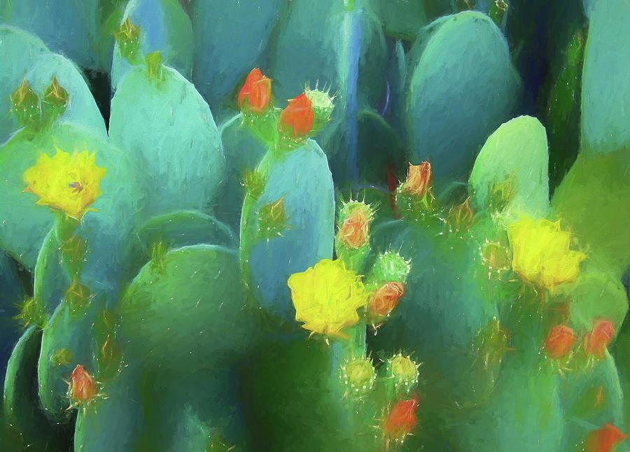 Cactus Flowers by Kathy Bassett