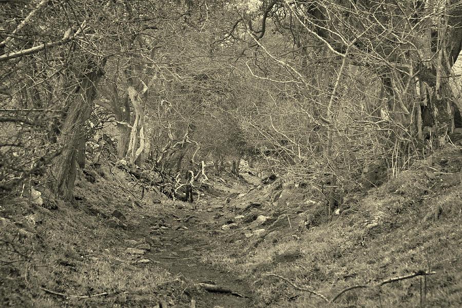 Calver Peak walk by Jerry Daniel