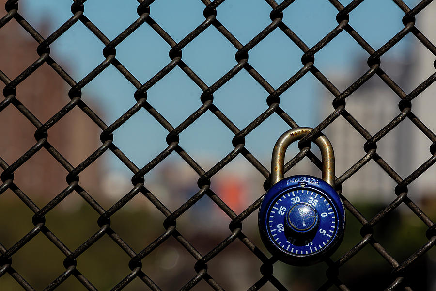 Chain Link Fence and Padlock by Robert Ullmann