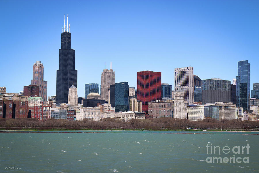 Chicago Skyline by Veronica Batterson