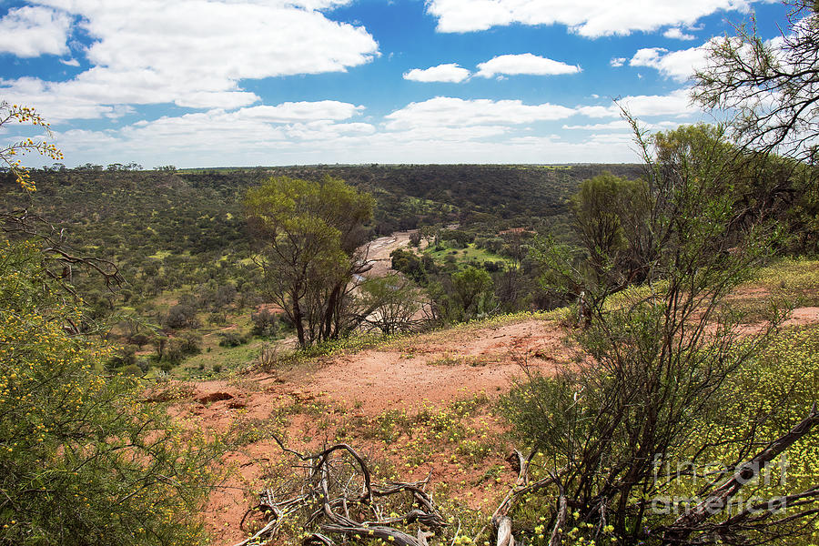 Coalseam Conservation Park, Nangetty, Western Australia by Elaine Teague