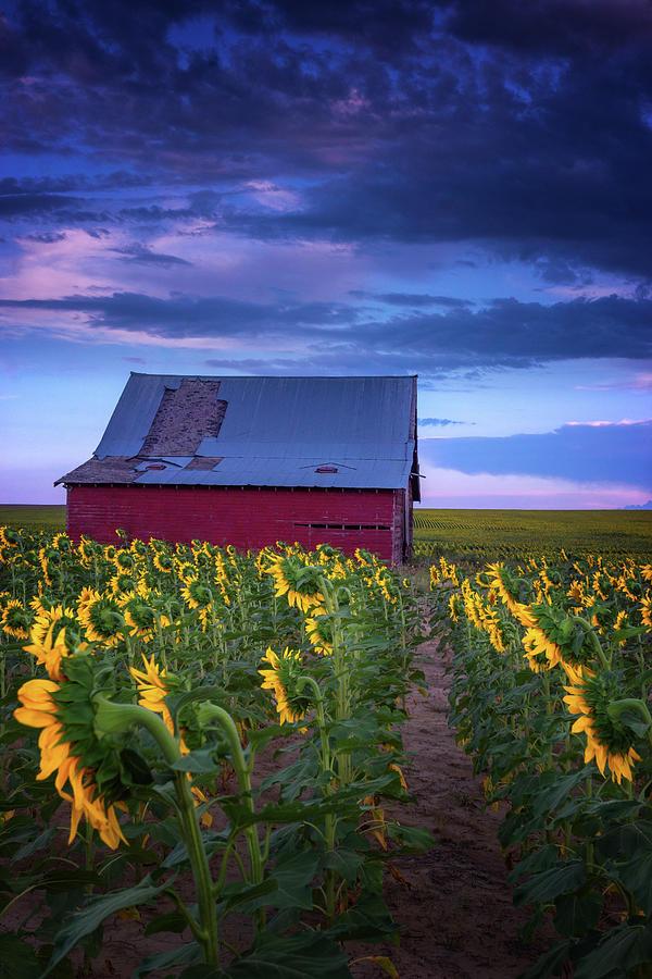 Colorado Country by John De Bord