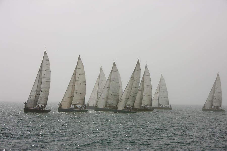 Competitive Sailing In Key West Photograph by Schedivy Pictures Inc.