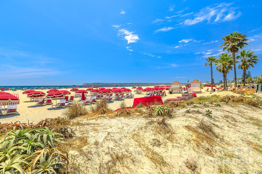 Coronado Beach in San Diego by Benny Marty