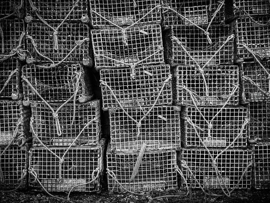 crab traps by Steve Stanger