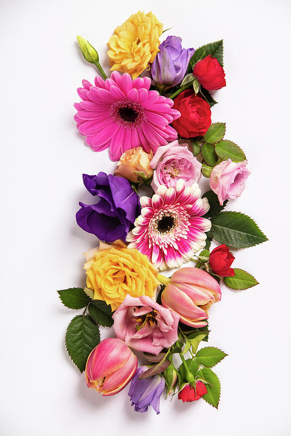 Creative layout made with beautiful flowers on white background. Photograph  by Natalia Klenova