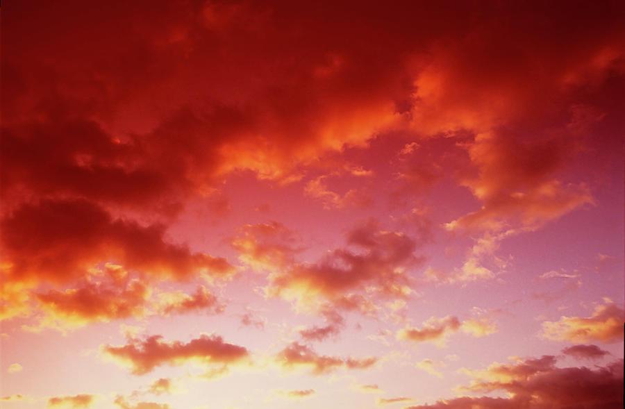 Dawn Photograph by Images Etc Ltd