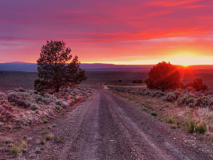 Beautiful Photograph - Desert Road 4 by Leland D Howard