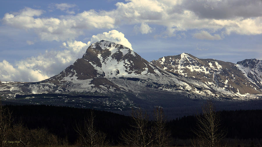 Divide Mountain, Early Spring by Tracey Vivar