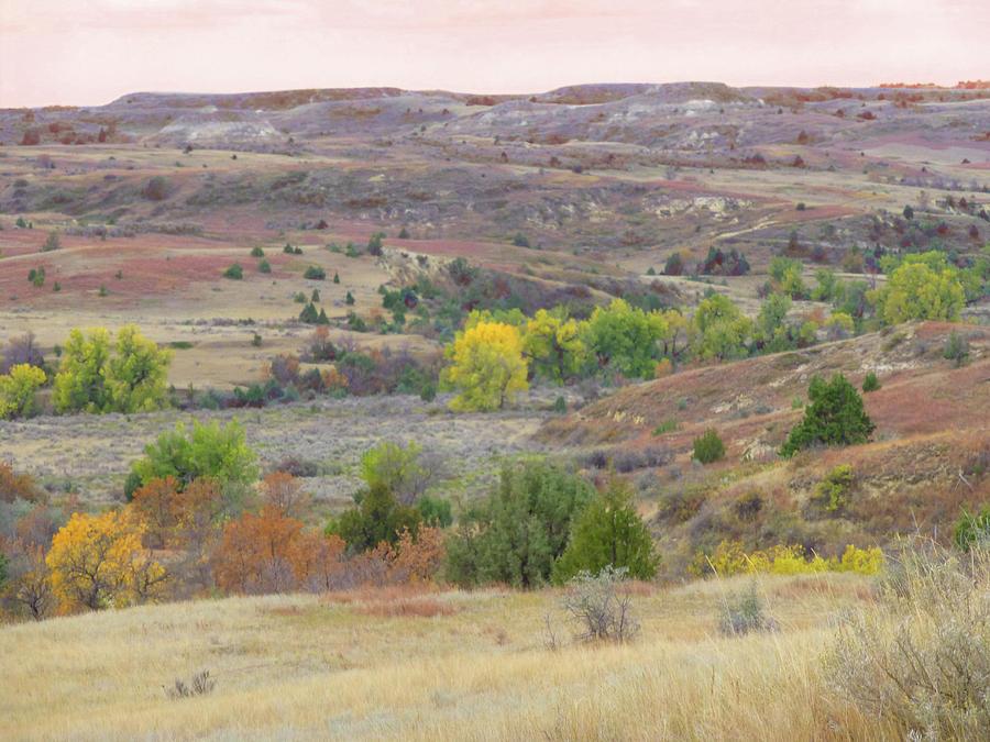 North Dakota Photograph - Divine Dakota by Cris Fulton
