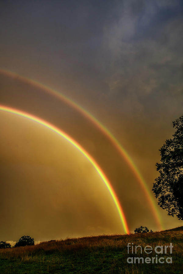 Double Rainbow over Pasture Field by Thomas R Fletcher