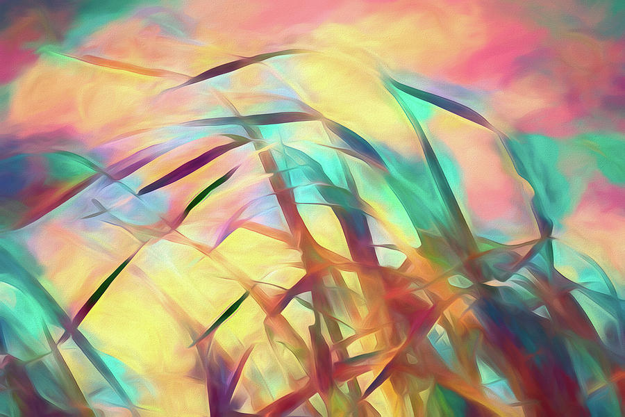 Summer Breeze by Bob Orsillo