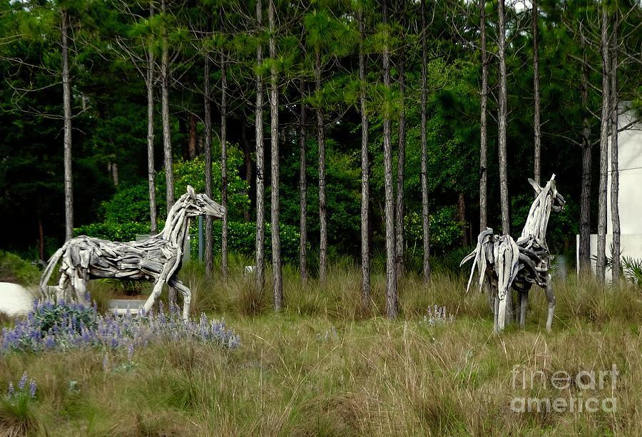 Beach Photograph - Driftwood Horses by Megan Cohen
