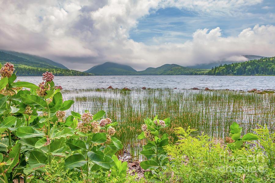 Eagle Lake Acadia National Park Photograph