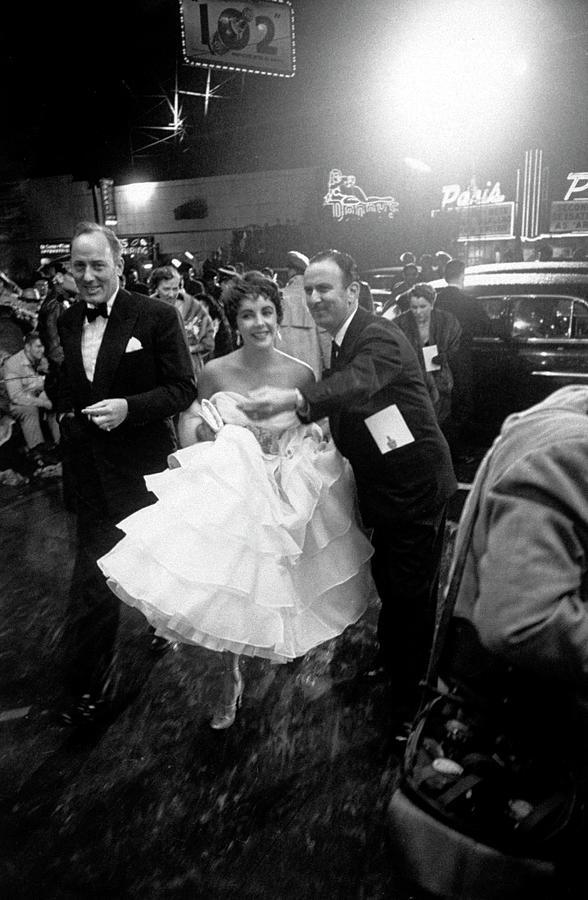 Elizabeth Taylor Photograph by Loomis Dean