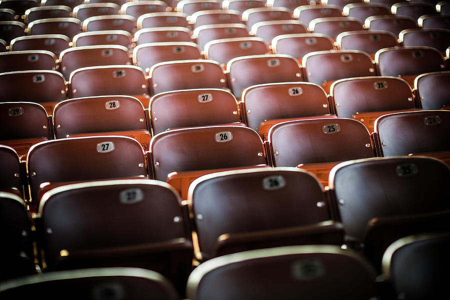Empty Stadium Seats Photograph by Momo Productions
