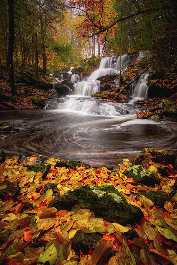 Fall at Garwin Falls by Robert Clifford