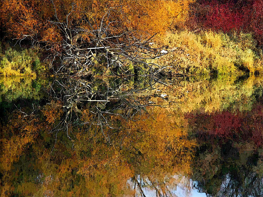 Fall Color by Robert Bissett