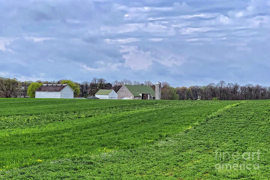 Farmland by Tom Gari Gallery-Three-Photography