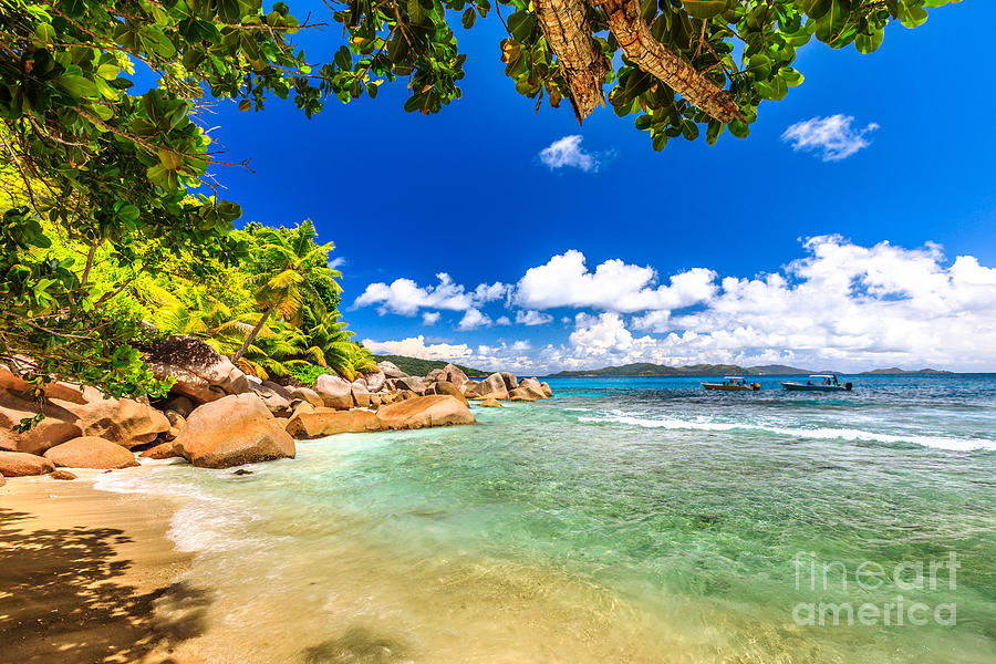 Felicite Island Seychelles by Benny Marty
