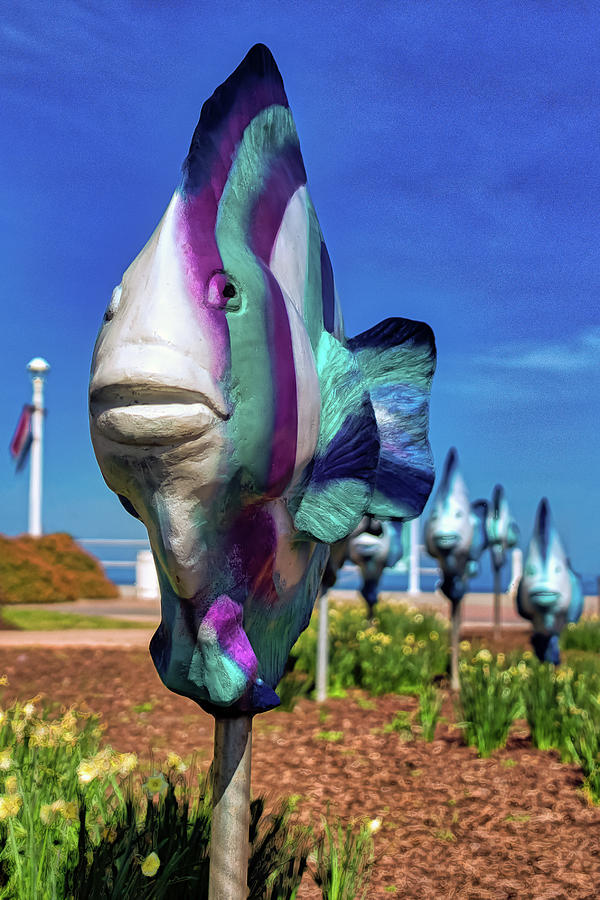 Fish Out of Water by Jerry Gammon