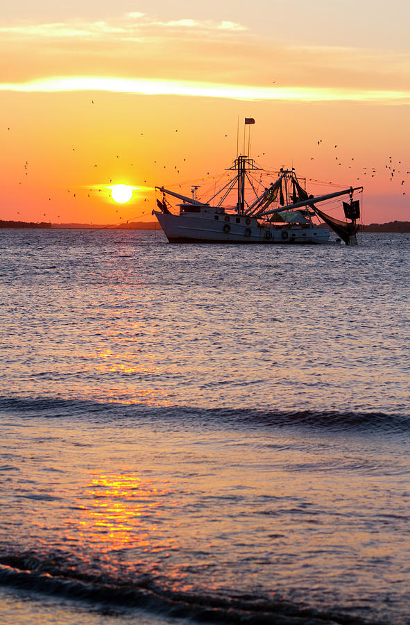 Fishing Boat At Sunset Photograph by Tshortell