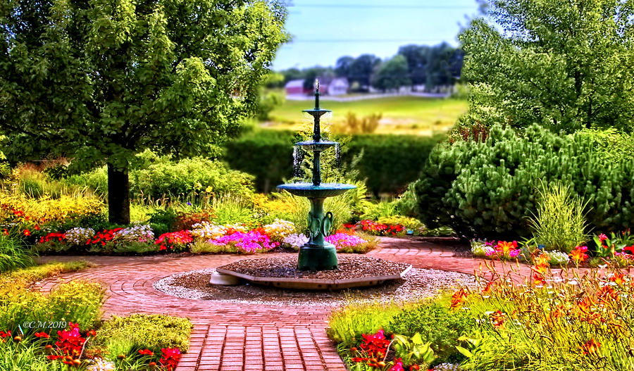 Floral Fountain by Catherine Melvin