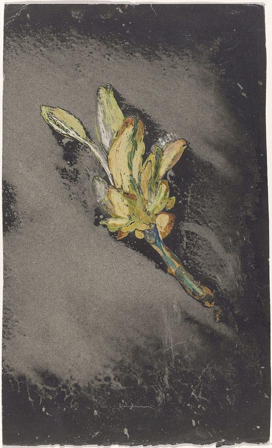 Flower, Carel Adolph Lion Cachet, 1874 - 1945 Painting