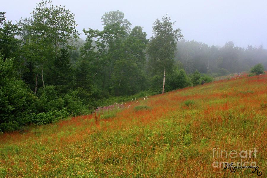 Foggy Afternoon by Mariarosa Rockefeller