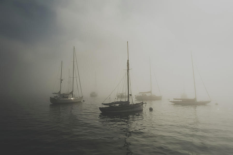 Foggy Marina by Christina Maiorano