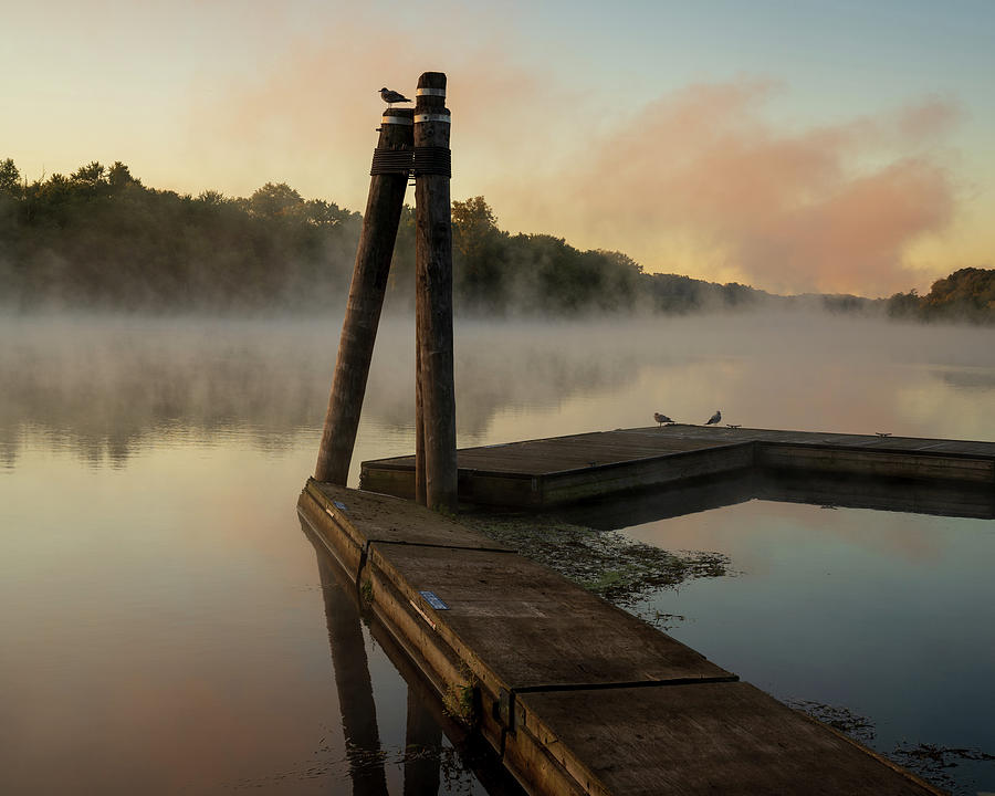 Foggy Morning on a River by Kyle Lee