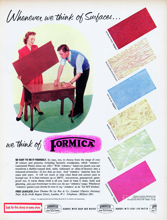 Formica Photograph by Picture Post