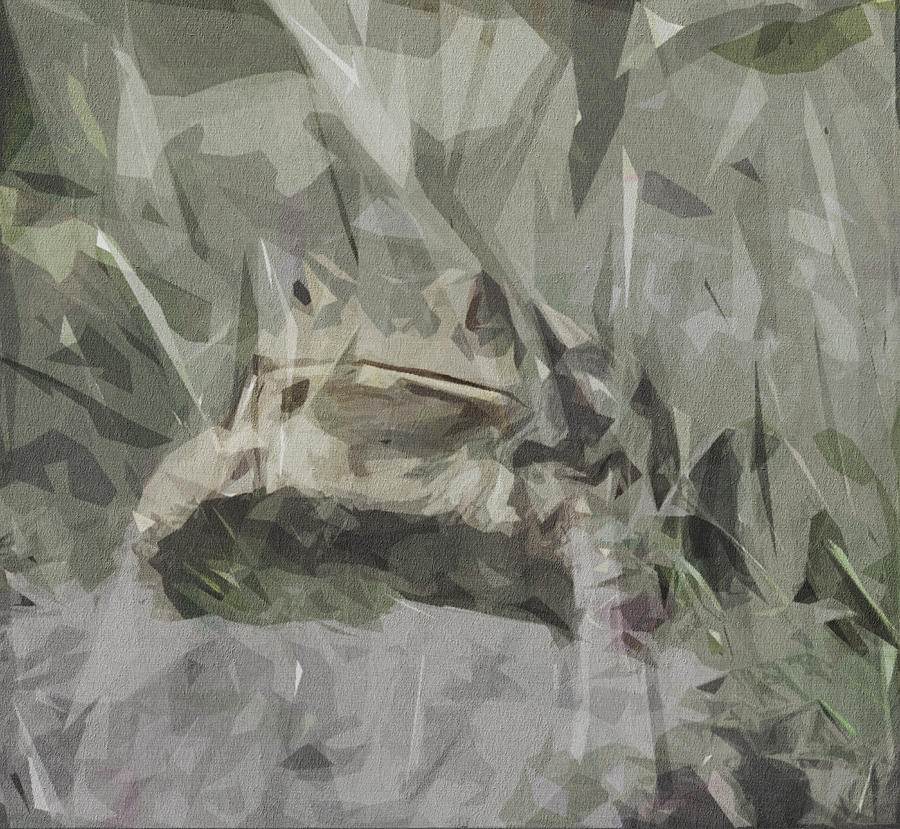 Frog Digital Art - Frog Toad Eyes Amphibian Head by Draw Sly
